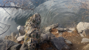 Trevor Tanner, dressed in a camouflage ghillie suit, is crouched with bent fly rod alongside the South Platte River.
